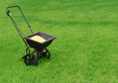 Learn the key benefits of re-seeding with native grass
